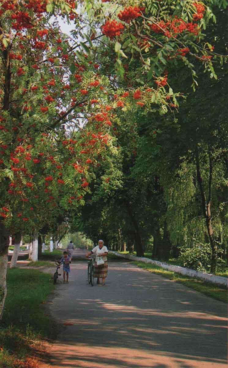 Любеч. Придніпровські луки